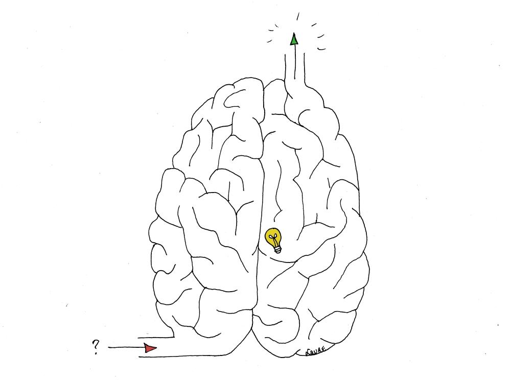 Les méandres du cerveau ne peuvent qu'émerveiller…